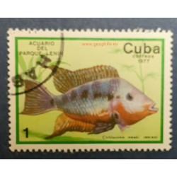Cuba (Kuba) Mi 2202 Obl