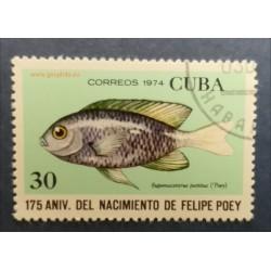 Ref 23886 Cuba Mi 1973  Obl