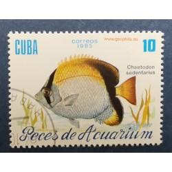 Cuba (Kuba) Mi 2968 Obl