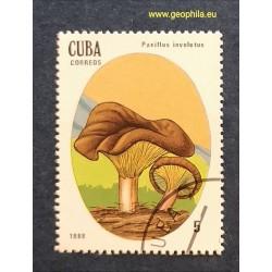 Cuba (Kuba) Obl, champignon...